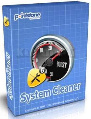 Pointstone System Cleaner